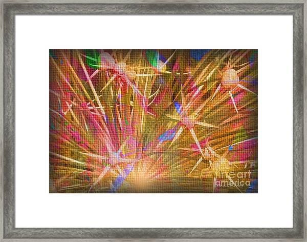 Pod Explosion Framed Print