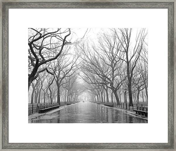 New York City - Poets Walk Central Park Framed Print