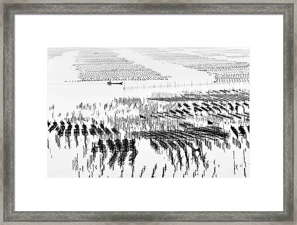 Point-line-surface Framed Print