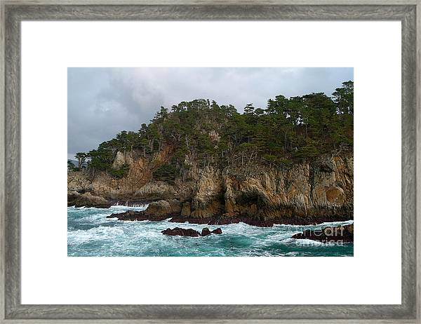 Point Lobos Coastal View Framed Print