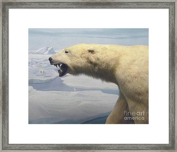 Polar Bear Diorama Framed Print