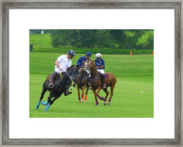 Polo Play Framed Print