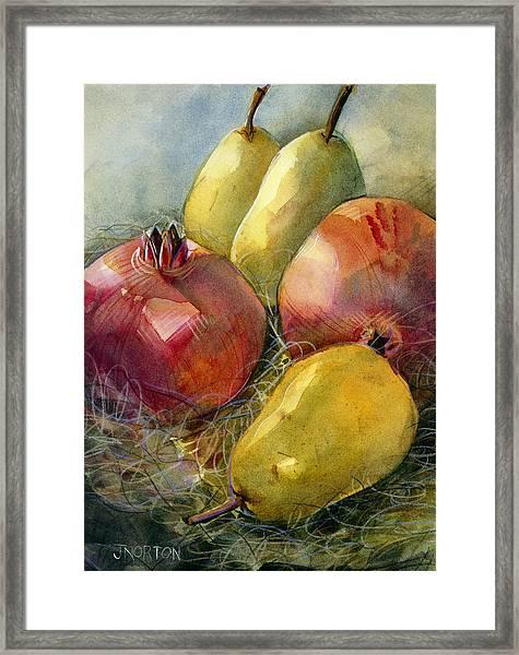 Pomegranates And Pears Framed Print