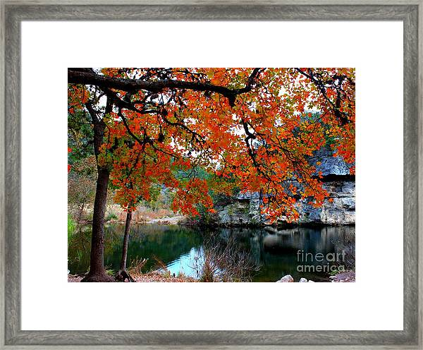 Fall At Lost Maples State Natural Area Framed Print