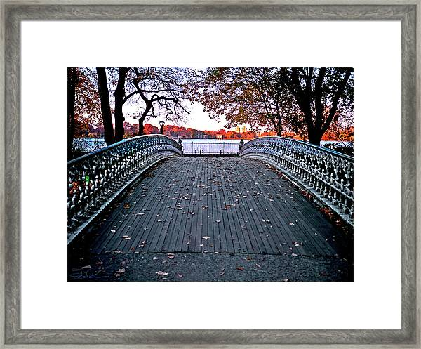Pond Footbridge Framed Print