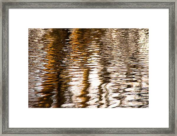 Pond Reflections #2 Framed Print
