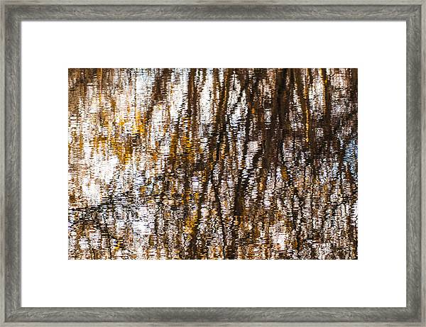 Pond Reflections #6 Framed Print