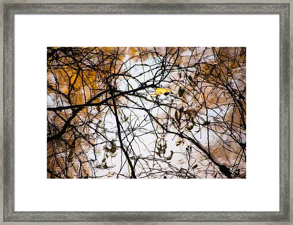 Pond Reflections #7 Framed Print