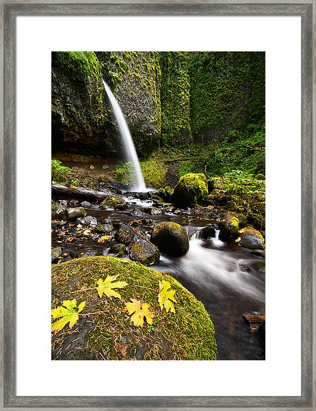Ponytail Falls Framed Print