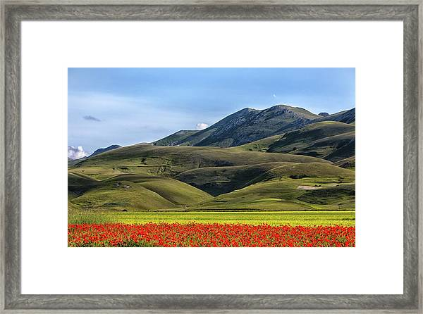 Poppies And Mountains Framed Print