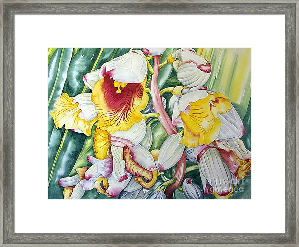 Poppin Out Framed Print