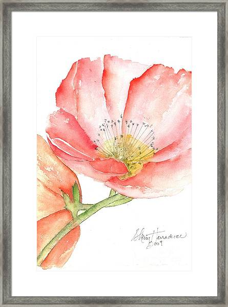 Poppy Bloom Framed Print