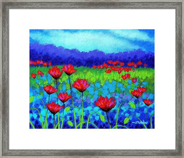 Poppy Study Framed Print
