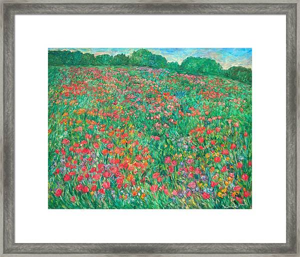 Poppy View Framed Print