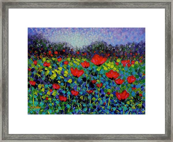 Poppy Vista Framed Print