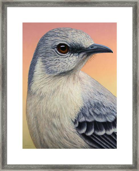 Portrait Of A Mockingbird Framed Print