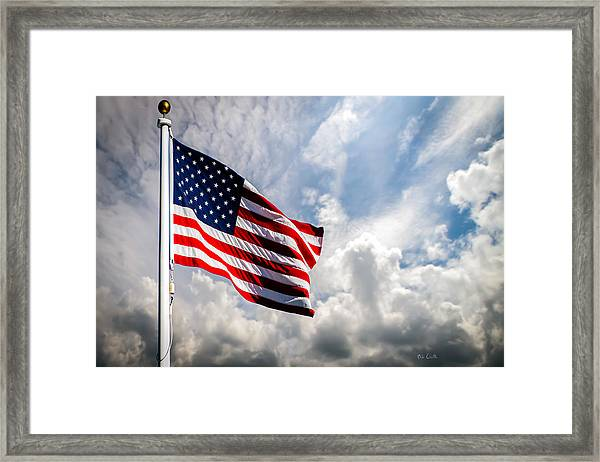 Portrait Of The United States Of America Flag Framed Print