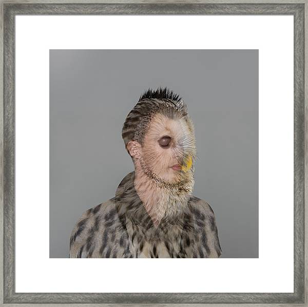 Portrait Of Young Man With Owl Overlay Framed Print