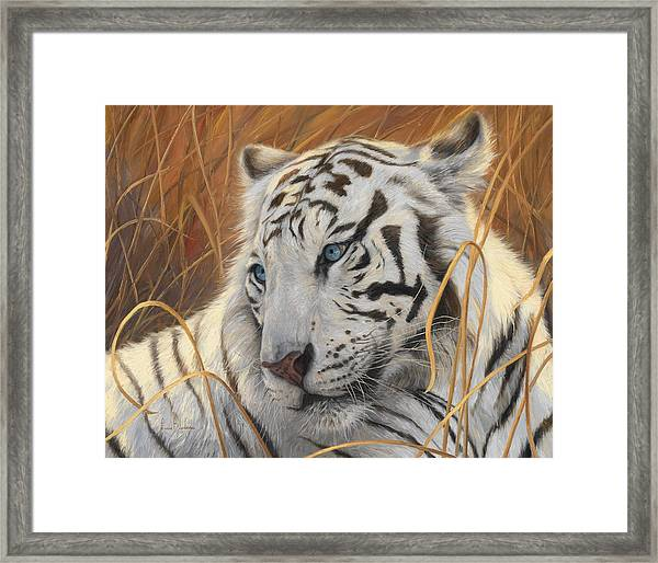 Portrait White Tiger 1 Framed Print