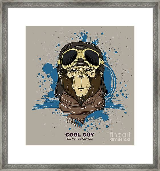 Poster With Portrait Of Monkey Wearing Framed Print