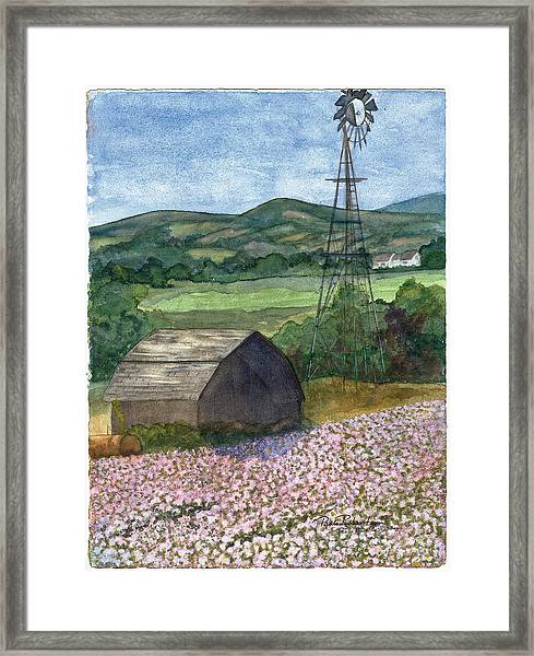 Potato Blossoms Framed Print