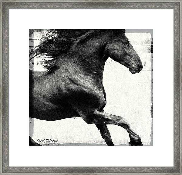 Power Of Stride Framed Print