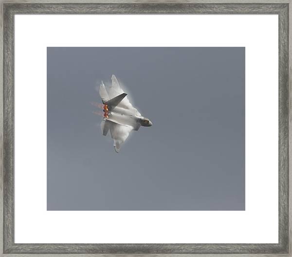 Power Of The Raptor Framed Print