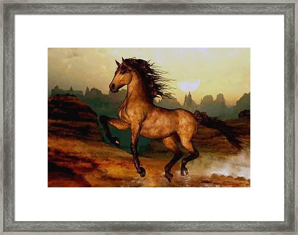 Prairie Dancer Framed Print