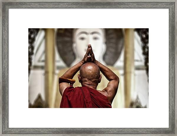 Praise Framed Print by Tom Baetsen -
