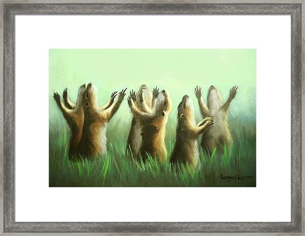 Praising Prairie Dogs Framed Print