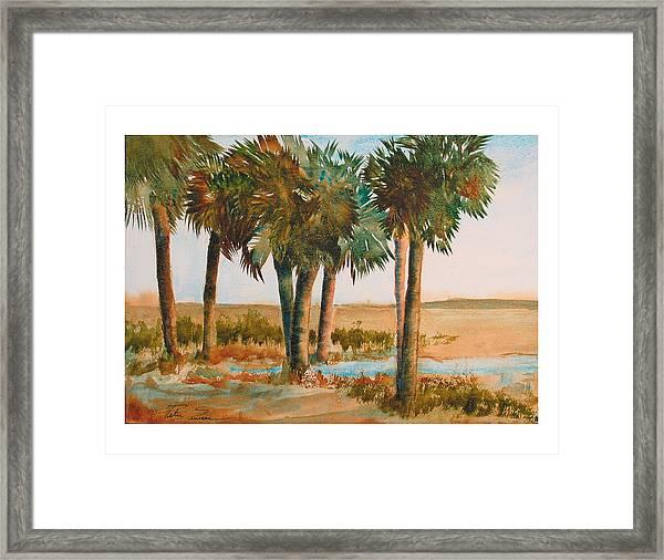 Prarie Palms II Framed Print