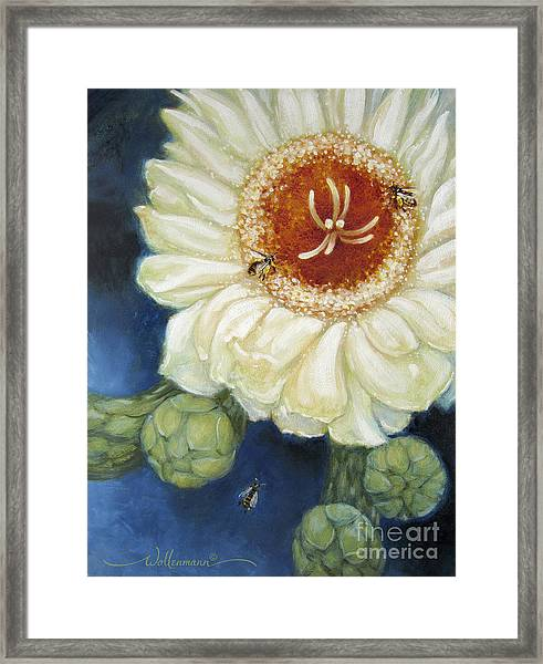 Predawn Business Framed Print