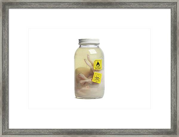 Preserved Calf Foetus Framed Print by Gregory Davies