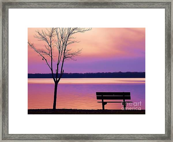 Presque Isle Solitude 11.12.12 Framed Print