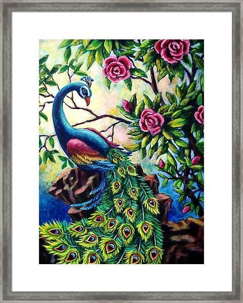 Pretty Peacock Framed Print