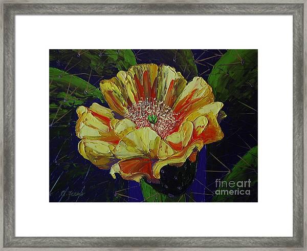 Prickly Flower Framed Print