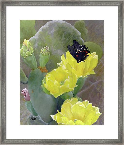 Prickly Pear Flower Framed Print