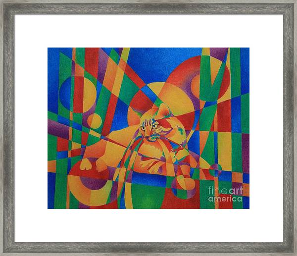 Primary Cat IIi Framed Print