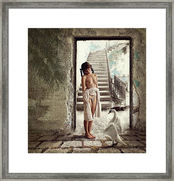 Princess And The Swan Framed Print by Dmitry Laudin