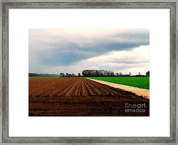 Promissing Field Framed Print