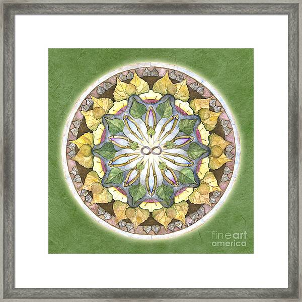 Prosperity Mandala Framed Print