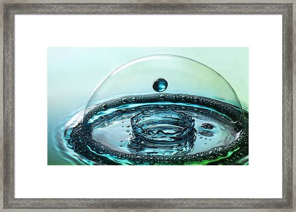 Protecting The Crown Framed Print