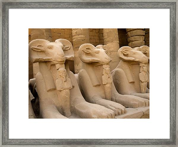 Protectors Of The Ages Framed Print