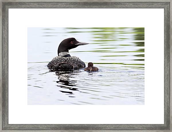 Proud Parent Framed Print