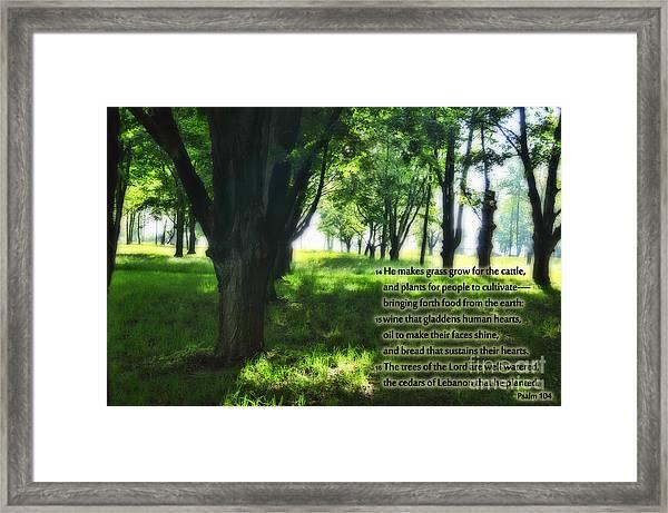 Psalm 104 Framed Print