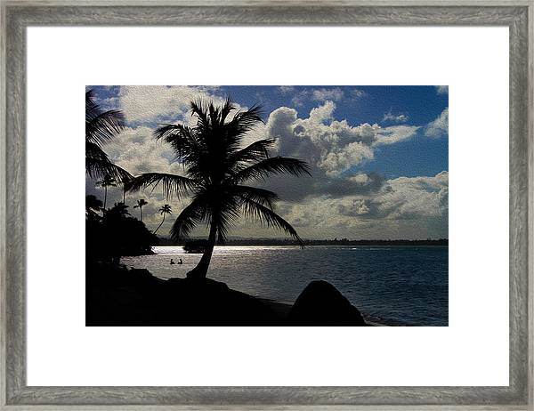 Puerto Rico Palm Tree Silhouette  Framed Print