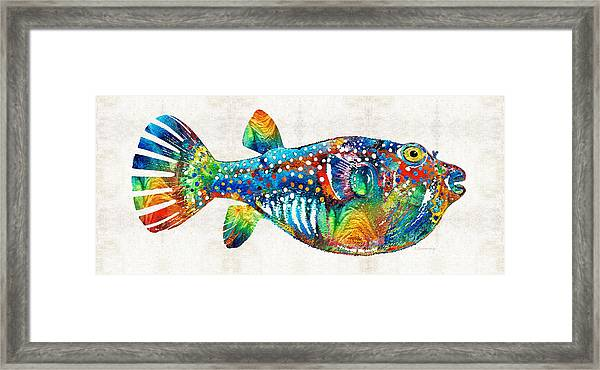 Puffer Fish Art - Blow Puff - By Sharon Cummings Framed Print