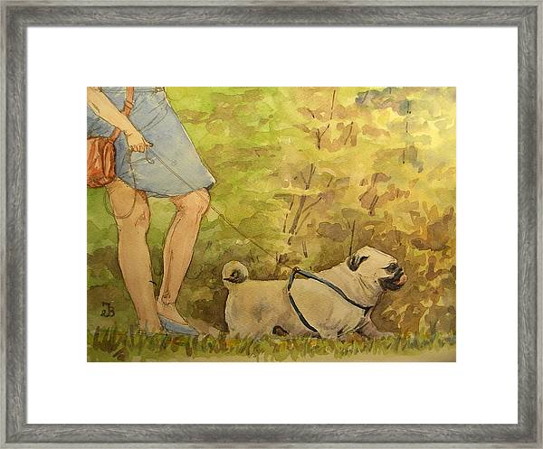 Pug Walkign Framed Print