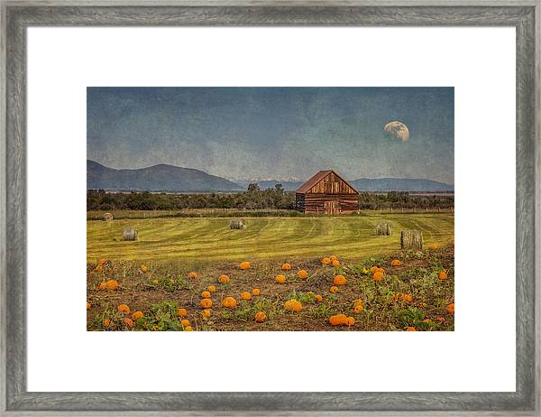 Framed Print featuring the photograph Pumpkin Field Moon Shack by Patti Deters
