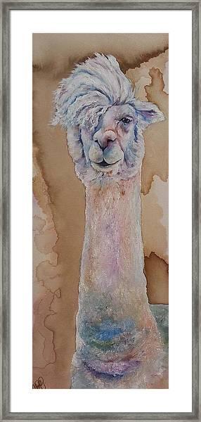 Punk Rock Alpaca Framed Print